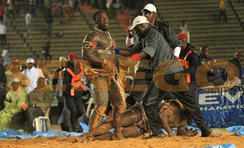 Senegalese Wrestling: Papa Sow Taught a Lesson Never to Forget In a One-Minute Combat.