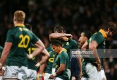 Rugby championship: South Africa Dismantled by New Zealand