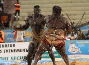 Senegalese Wrestling Resumes After Six Months of Uncertainty.
